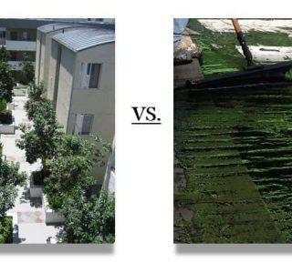 pedestrian traffic coating vs slab waterproofing